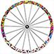 Bora Wheel